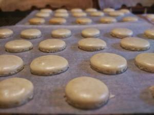 Cream macarons
